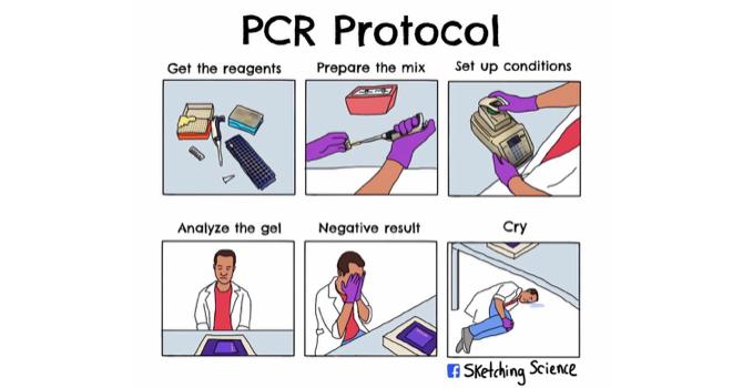 PCR Gods